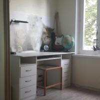 Рабочий стол с тумбочками